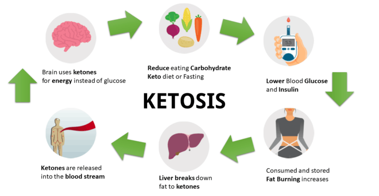 Low Carb Diets Induce Ketosis.