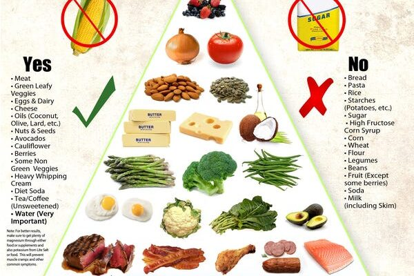 How Does A Low Carbohydrate High Fat Diet Work?